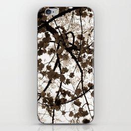 Autumnal Skies iPhone Skin