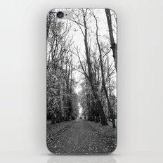 Leafy Walk iPhone & iPod Skin
