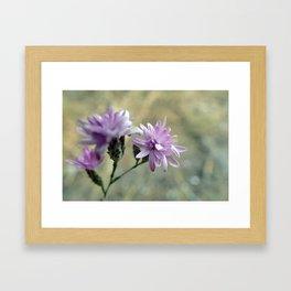 Tiny Flower Framed Art Print
