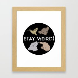 Stay Weird! Framed Art Print