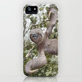 Sloth, A Real Tree Hugger iPhone Case