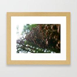 Overtaken Framed Art Print