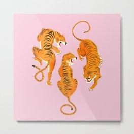 Three fierce tigers Metal Print