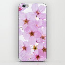 Cherry Blossom Flowers at Yoyogi Park in Tokyo Japan iPhone Skin