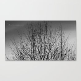 Small Lines  Canvas Print