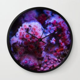 Under the Sea Blooming Magenta Coral Reef Sea anemone Underwater Photography Colored Lustre Print Wall Clock