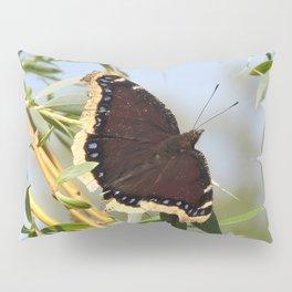 Mourning Cloak Butterfly Sunning Pillow Sham