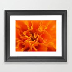 Flowers Framed Art Print