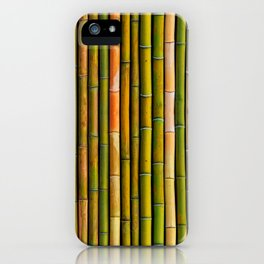 Bamboo fence, texture iPhone Case