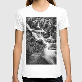 Winter Rapids T-shirt