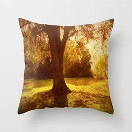 A Pleasant Place to Sit. Throw Pillow