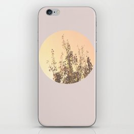 A New Dawn  iPhone Skin