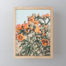 Cholla, Orange Flowering Cactus Framed Mini Art Print