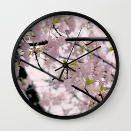 Dreamy Cherry Blossoms Wall Clock