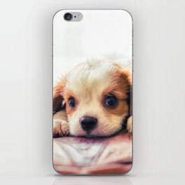 Unconditional Love  iPhone Skin