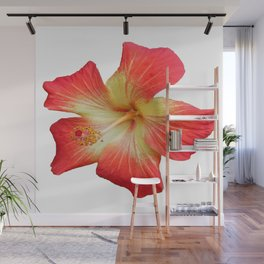 Gorgeous Red And Gold Hawaiian Hibiscus Flower No Text Wall Mural