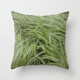 California Grass & Dew Throw Pillow