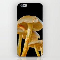 FAIRY MUSHROOMS iPhone & iPod Skin