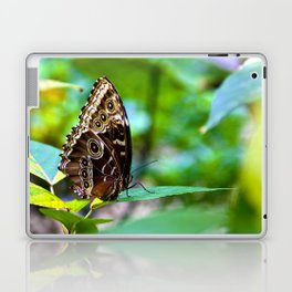 Blue morpho butterfly Laptop & iPad Skin