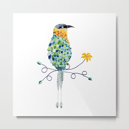Bird of Costa Rica, pajaro Bobo Metal Print