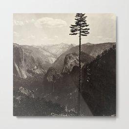 Yosemite Valley, California Metal Print