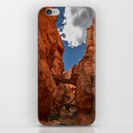 Bryce_Canyon National_Park - 4 iPhone Skin