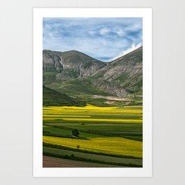The fields of Castelluccio Art Print