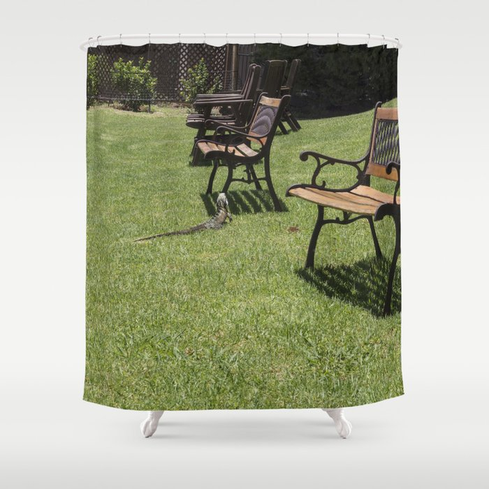 Lawn Chairs Lizard Shower Curtain