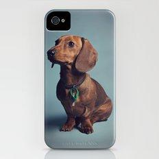 Dachshund Slim Case iPhone (4, 4s)
