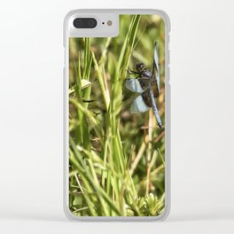 Common Whitetail Dragonfly on a Blade of Grass Clear iPhone Case
