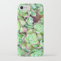 succulents iPhone & iPod Cases featuring Succulents  by Lisa Argyropoulos