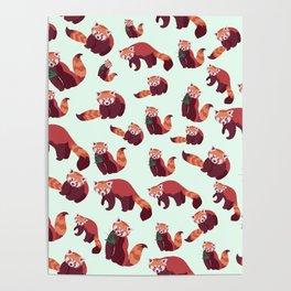 Red Panda Pattern Poster