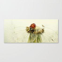 Dandelion Ladybugs Canvas Print