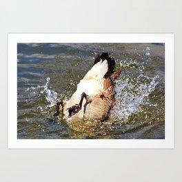 Bottom Up Splash Art Print