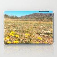 navajo iPad Cases featuring Navajo by Nicole Roberts