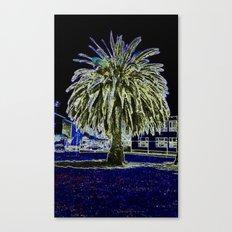 Magic night with Palm tree Canvas Print