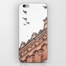 Citys Bird Sanctuary iPhone Skin
