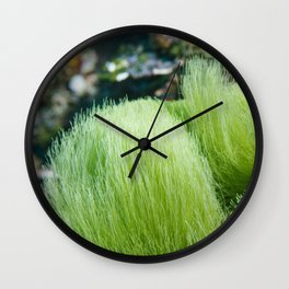 Underwater Pom Pom Wall Clock