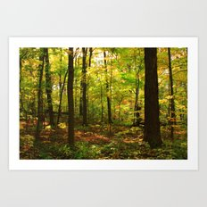 Maple Forest (Painterly Style) Art Print