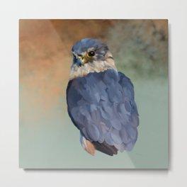Bird Art: Merlin Metal Print