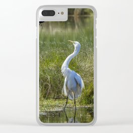 A Disagreement at the Pond Clear iPhone Case