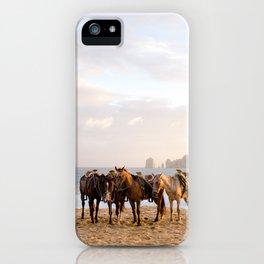 Horses on the beach iPhone Case