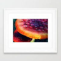mushrooms Framed Art Prints featuring mushrooms by JoanaRosaC