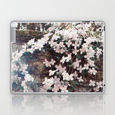 Blossom in Pink Laptop & iPad Skin