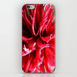 Crimson Red iPhone Skin