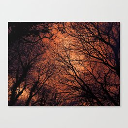 The Enchanted Forest 2 Canvas Print
