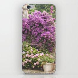 El muro iPhone Skin