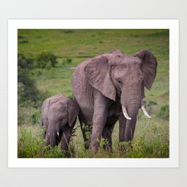 Mother and Calf African Elephant Art Print
