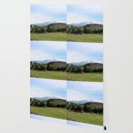 Pike's Peak Wallpaper