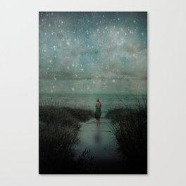 Stars in the Night Sky Canvas Print